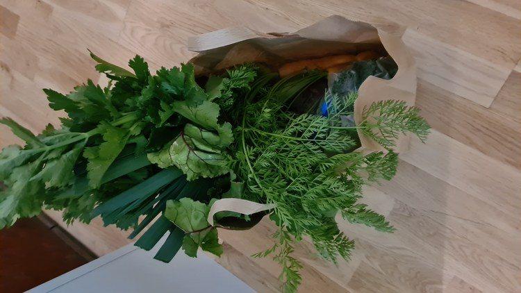Friske gode grønnsaker